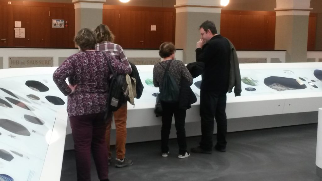 """Dauerausstellung """"Mineralien und Fossilien """""""