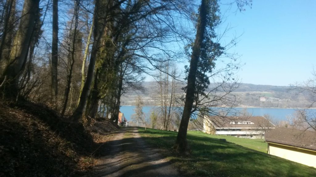Abstieg nach Stein am Rhein SH