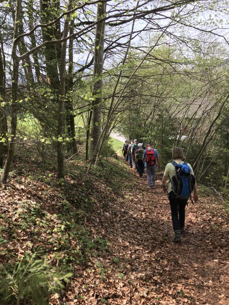 zügigen Schrittes voran auf dem Waldweg
