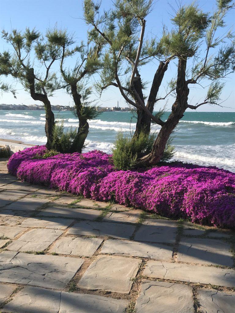 Hotel del Levante, Garten mit Meersicht