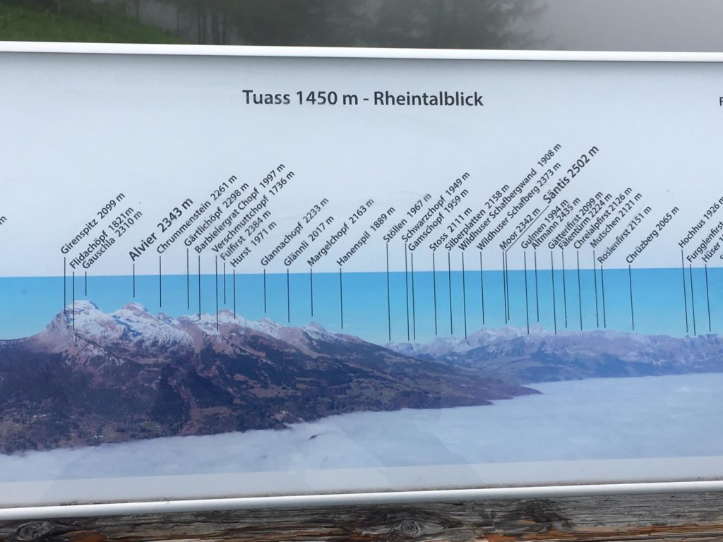 Panoramaübersicht Tuass - Rheintalblick