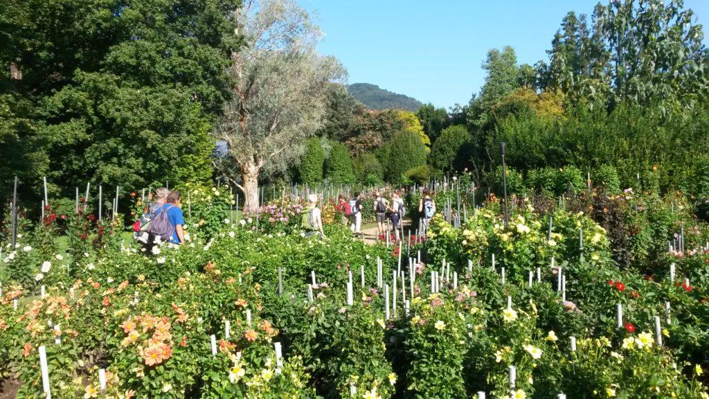 Pallanza - Botanische Gärten der Villa Taranto
