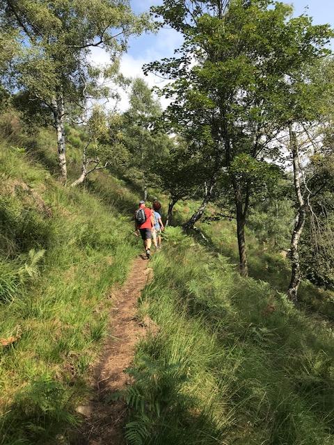 oberhalb Cannobio - unterwegs auf der Bergwanderung zum MONTE GIOVE (1298m)