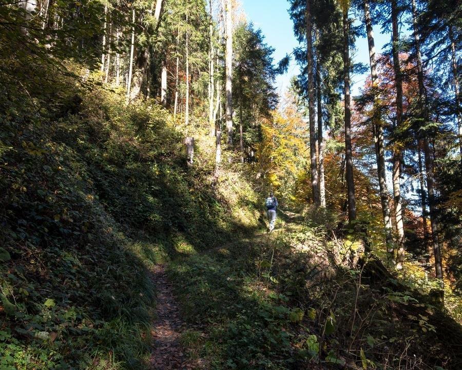 WALSA-Weg: Flott unterwegs