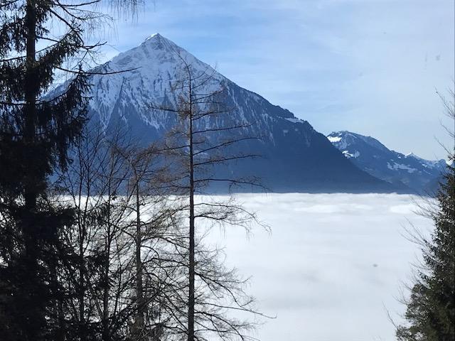 Niederhorn über dem Nebel mit Blick zum Niesen