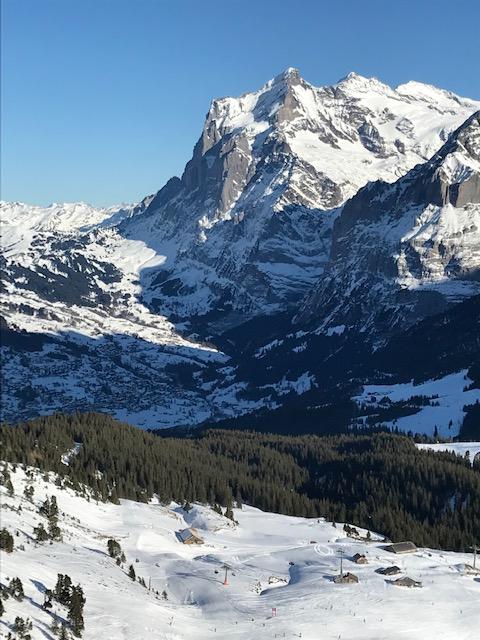 Blick vom Männlichen Richtung Grindelwald