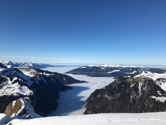 Das Nebelmeer wird zum breiten Strom. Sicht vom Männlichen nach Norden