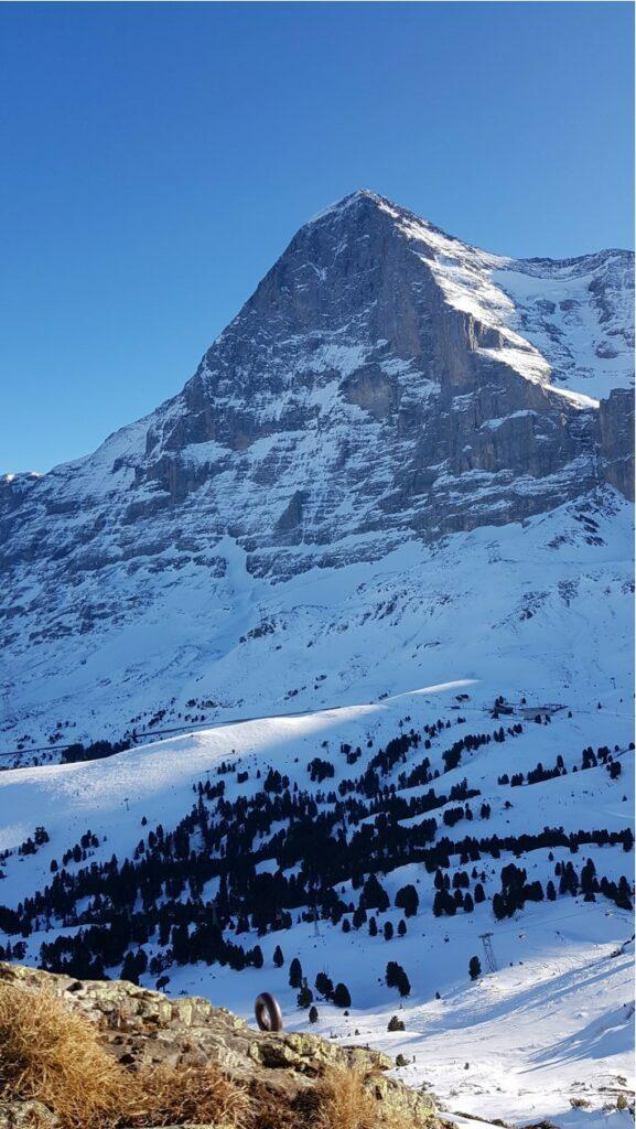 Zum Abschied bestaunen wir nochmals die imposante Eigernordwand.