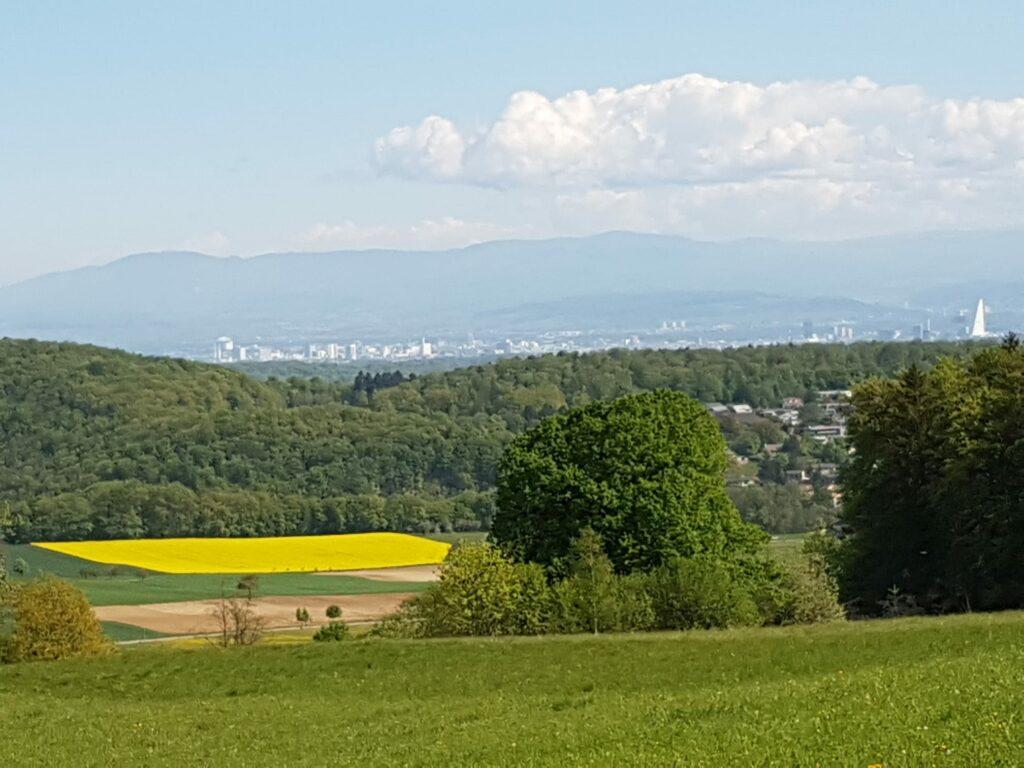 Blick Richtung Basel mit dem Roche-Turm und dem Schwarzwald im Hintergrund - 19.04.2020