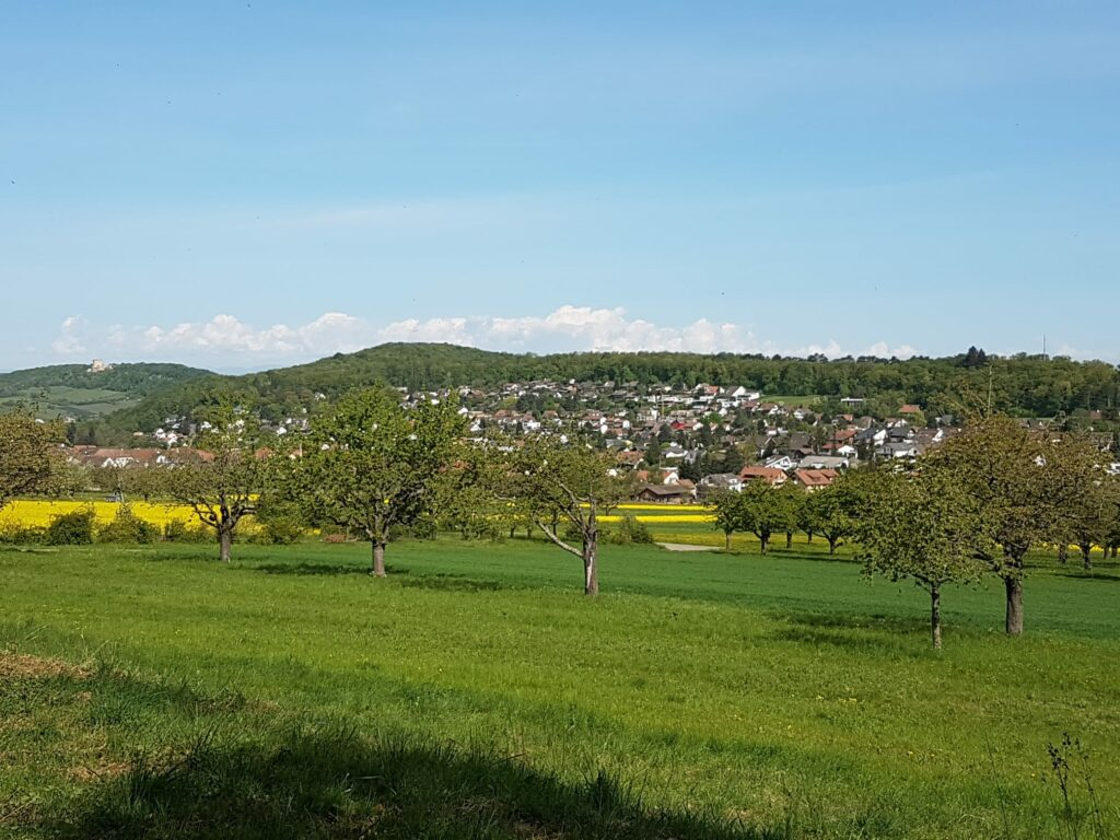 Blick Richtung Hofstetten-Flüh - 19.04.2020