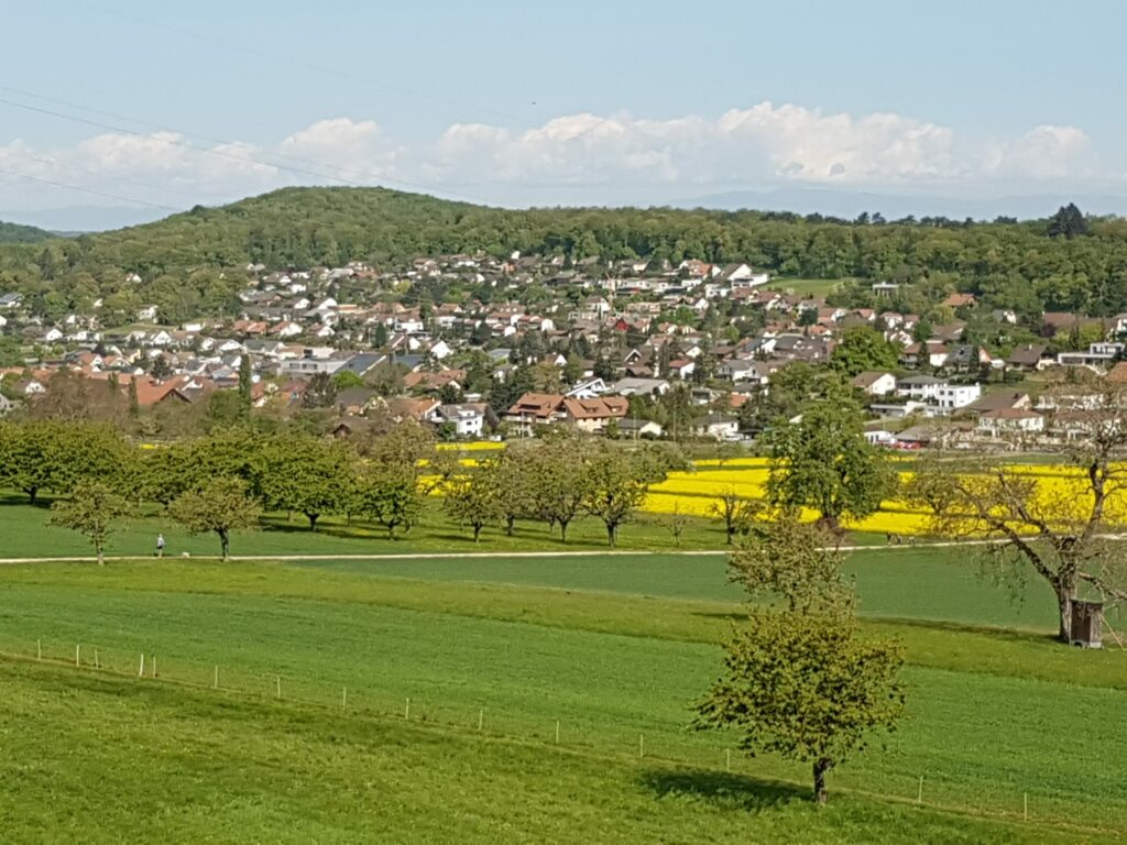 Gemeinde Hofstetten-Flüh - 19.04.2020