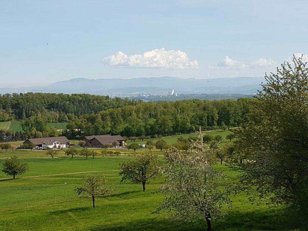 Region Hofstetten-Flüh mit Blick Richtung Roche-Turm und Basel - 19.04.2020