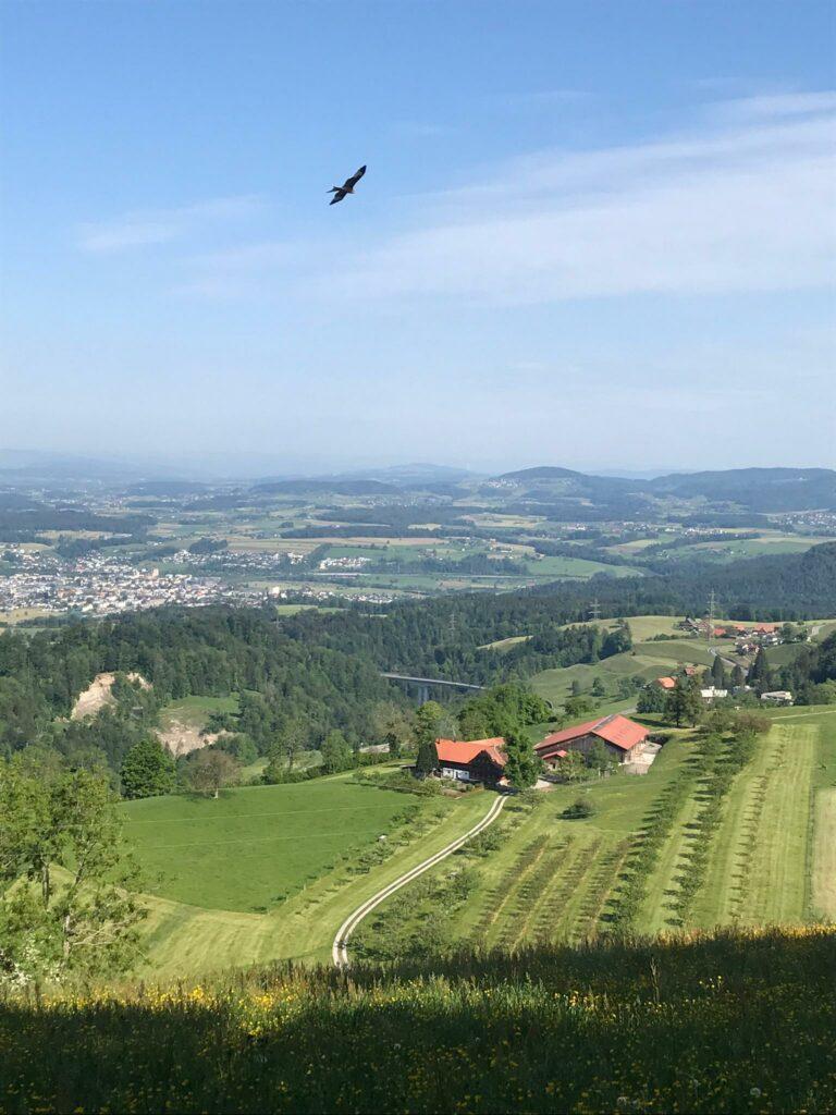 mit dem Bike ab Menzingen ZG zur Anhöhe Gubel auf 983 m - 09.05.2020