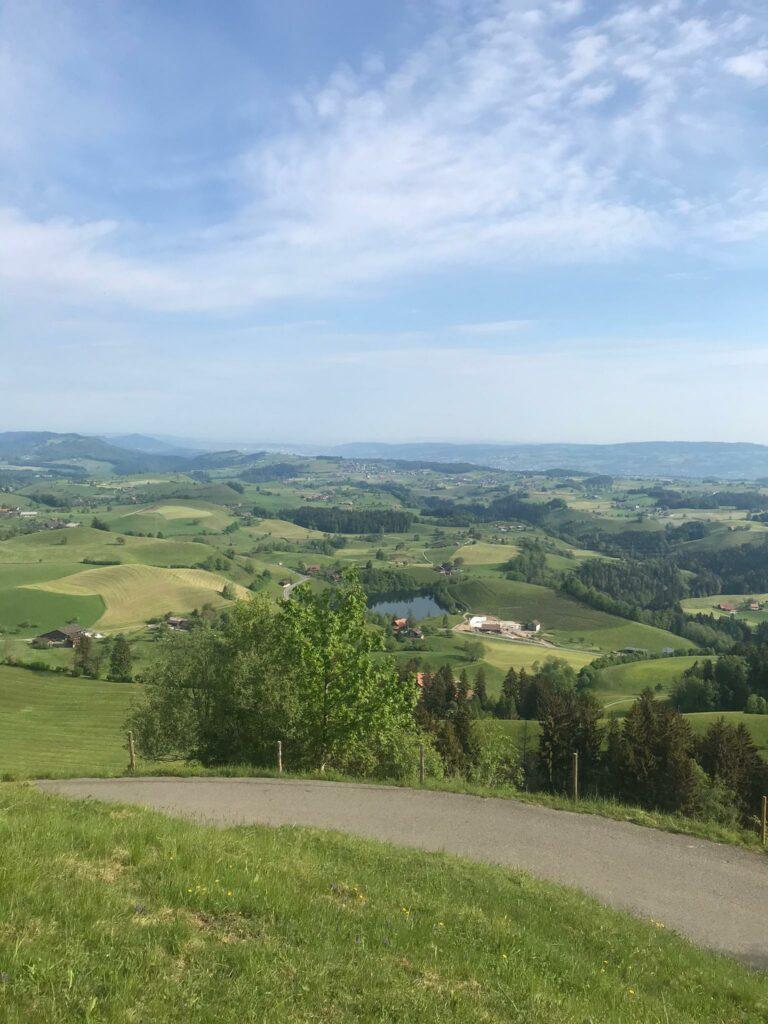 Biketour Oberägeri-Finstersee-Raten ZG: Blick Richtung Hüttner- und Zürichsee - 09.05.2020