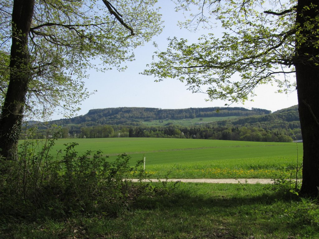 unterwegs von Reinach Richtung Eggfluh im Jura - 11.04.2011