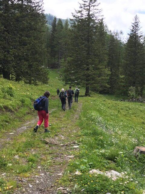unterwegs beim Waldboda