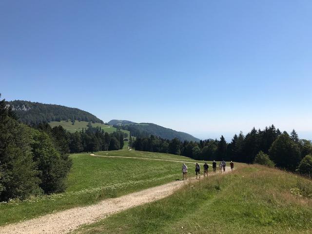 schöner Wanderweg Richtung Hasenmatt