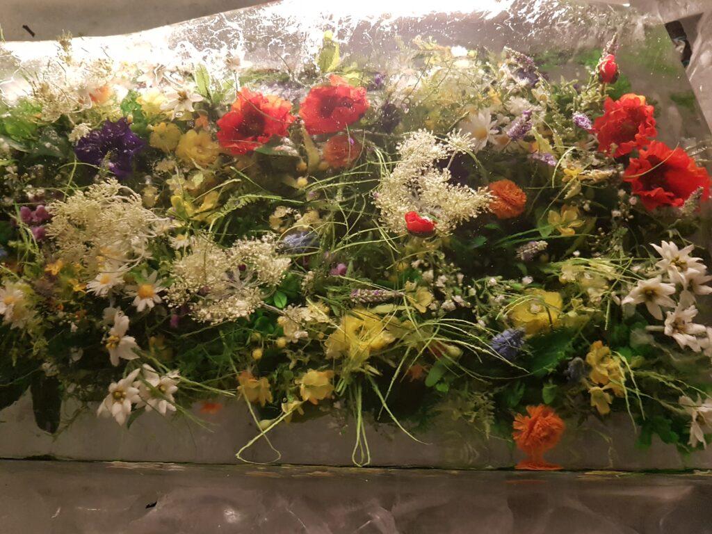 Blumenschmuck in Eis gelegt