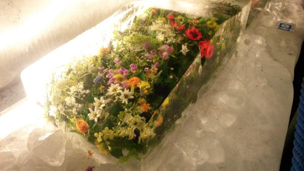 Blumenkissen in Eis gebettet