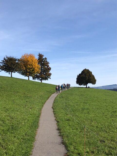 abwechslungsreiche Landschaft auf dem Alpenpanorama-Weg