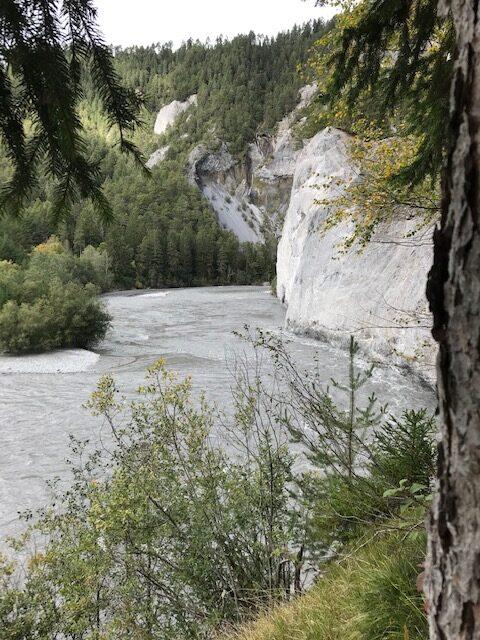 faszinierender Flusslauf in der Rheinschlucht