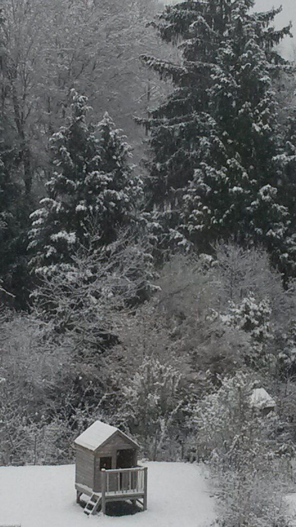 Wintergruss aus der Wohnsiedlung - 01.12.2020