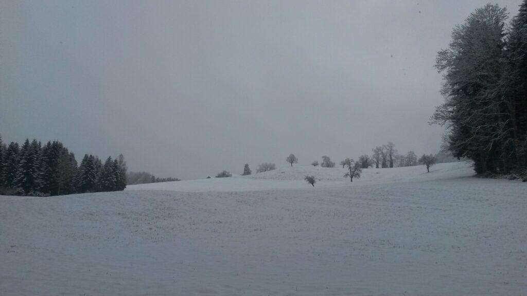 Blick über frisch verschneite Felder - 01.12.2020