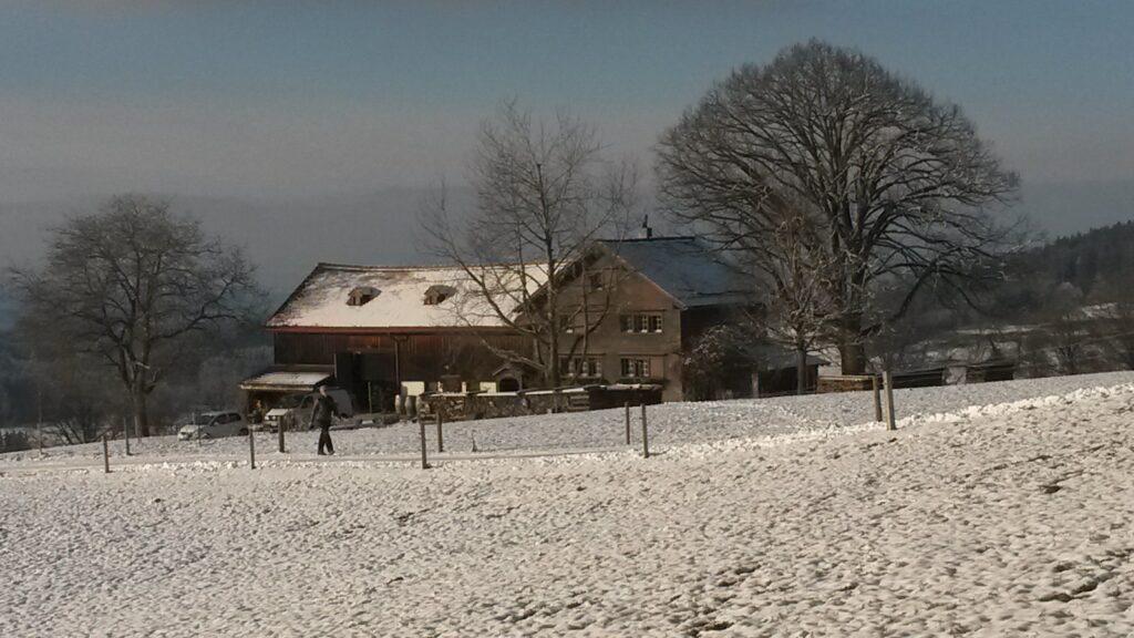 einsames Bauernhaus - 03.12.2020