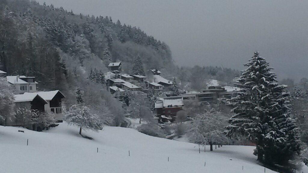 winterliche Dorfidylle - 10.12.2020
