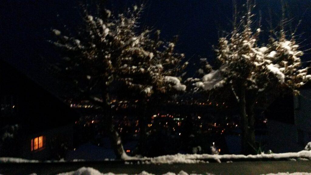 Schneeweiss in der Dunkelheit - 11.12.2020