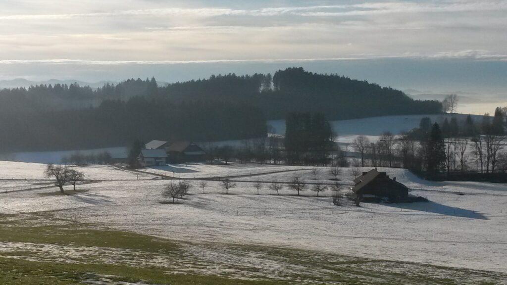 langsam schmelzendes Schneefeld auf dem Hohfirst - 19.12.2020