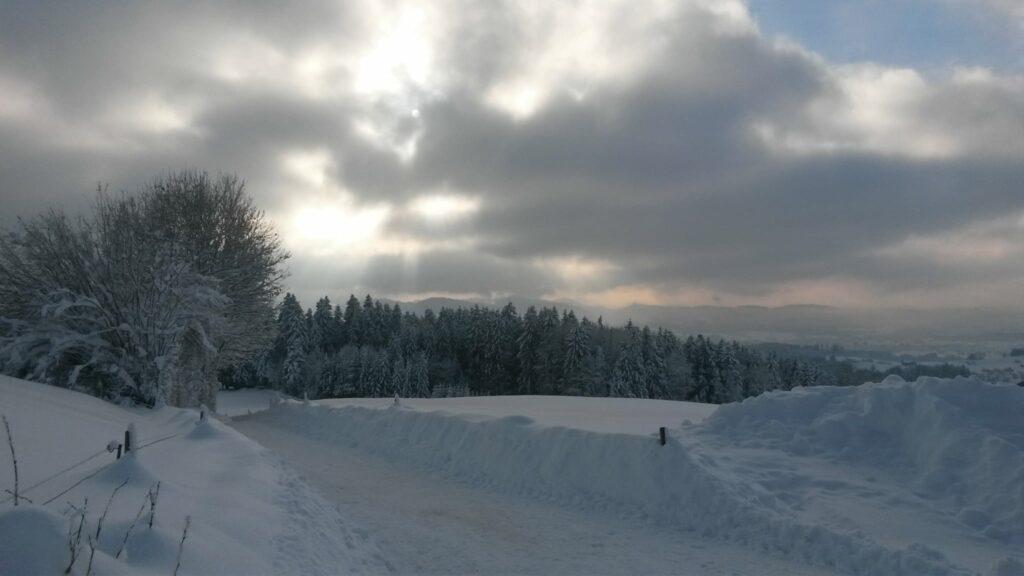 Ein sonniger Wintertag neigt sich dem Ende entgegen. - 16.01.2021