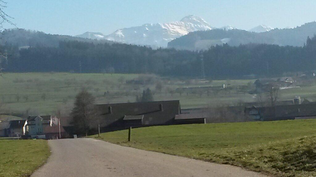 Wenigstens präsentiert sich der Säntis (2502m) noch im Winterkleid. - 21.02.2021