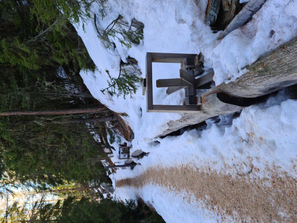 Winterwanderweg in Grächen entlang einer Suone - Erika, 02.03.2021