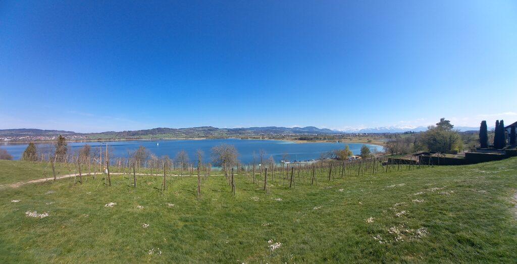 Blick vom Juckerhof auf den idyllischen Pfäffikersee  - 24.04.2021