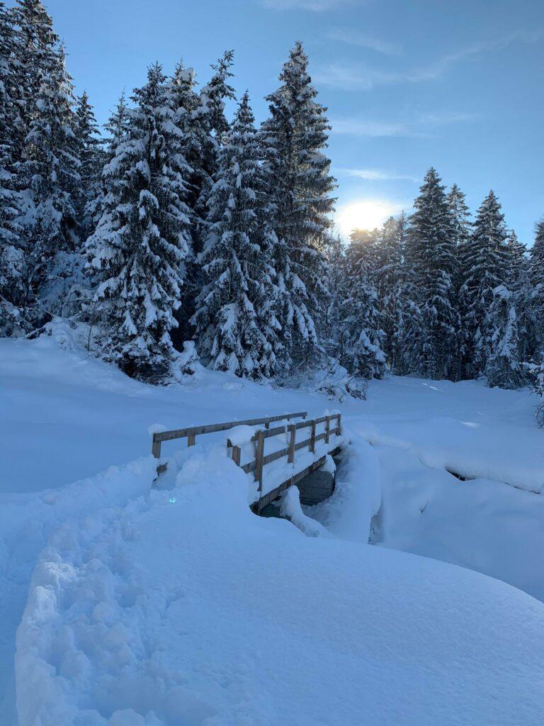 kleine Holzbrücke bei Trimmis - Judith