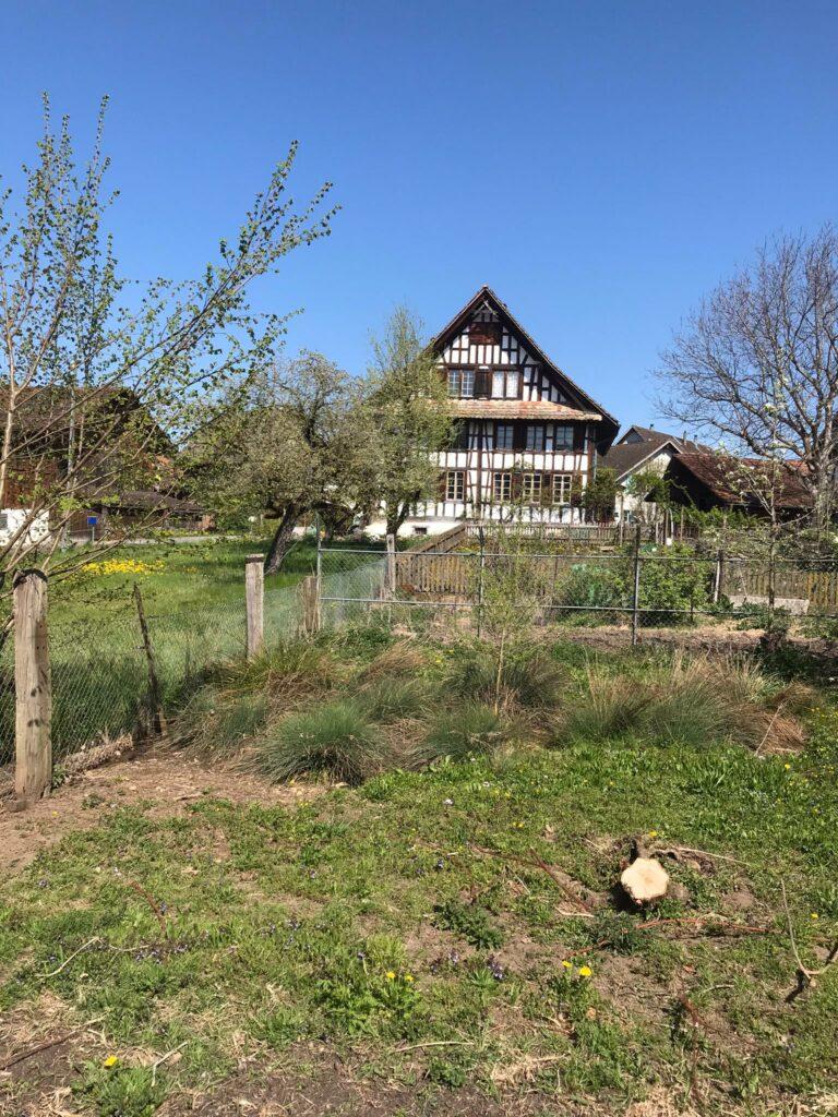 Region Mettmenstetten: Riegelhaus mit Garten - 25.04.2021