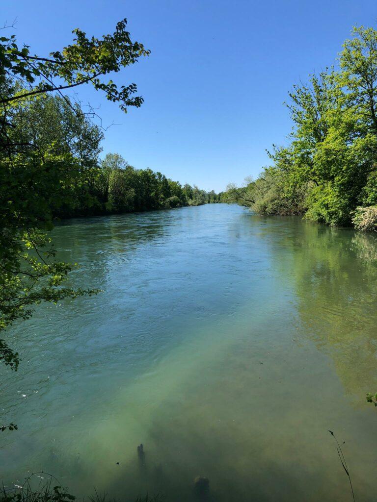 Bis dahin fliesst noch viel Wasser die Reuss hinunter..... - 30.05.2021