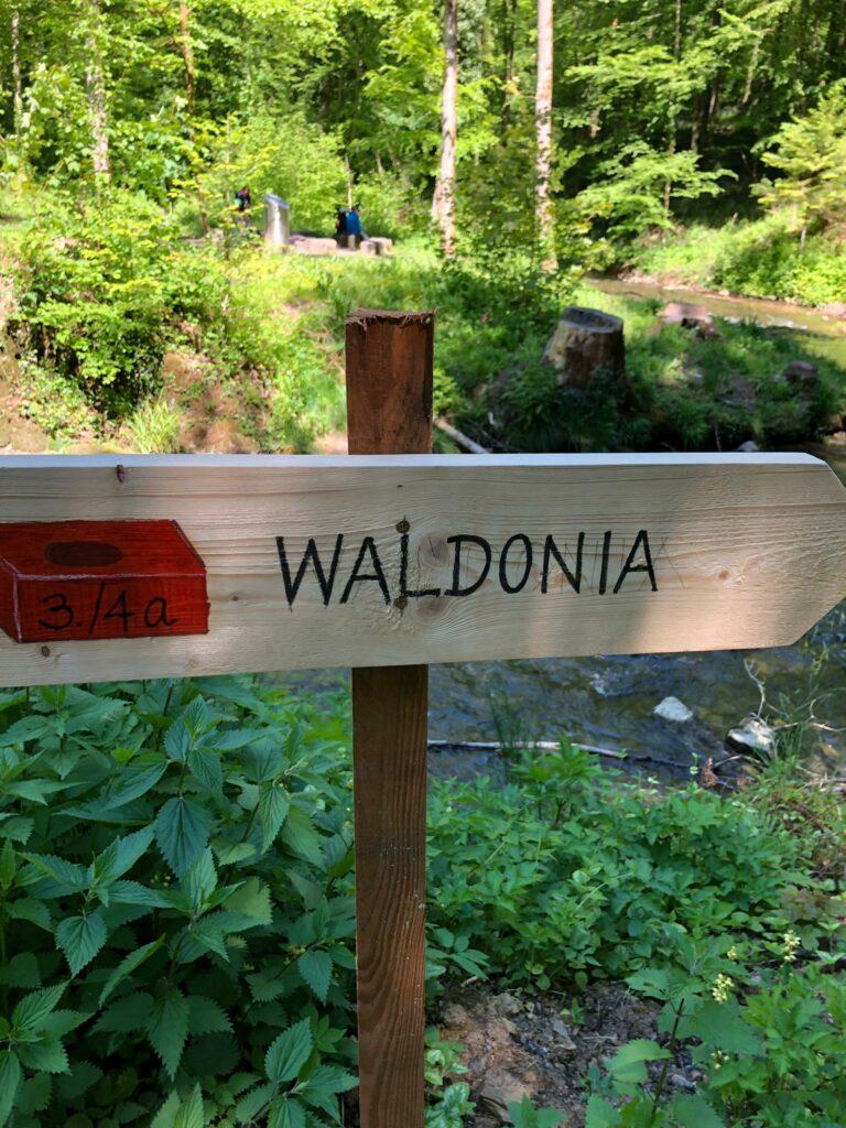 Universum der Waldonia - 30.05.2021