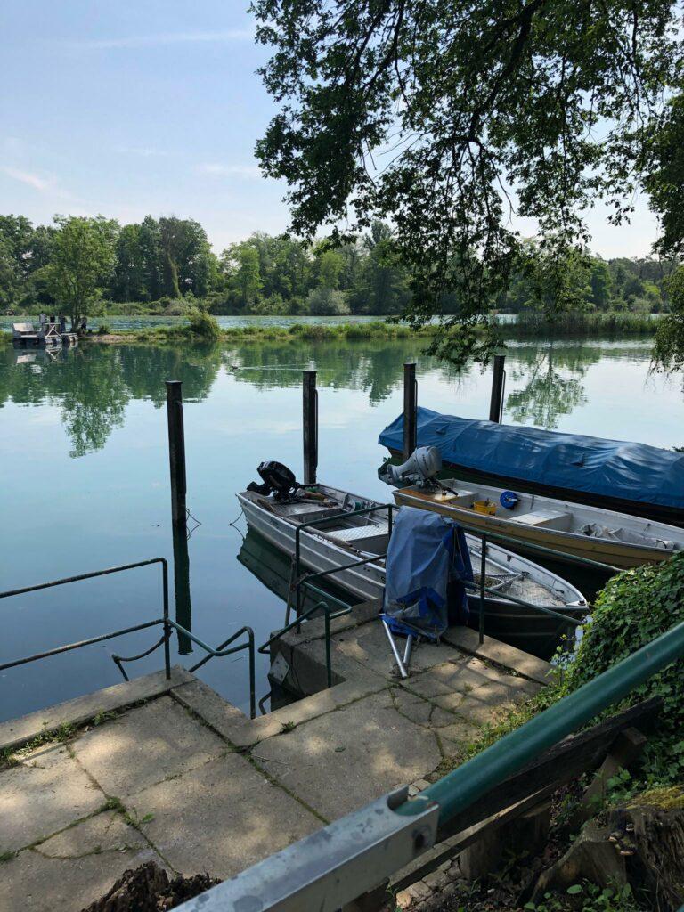 kleiner Bootshafen, Rheinau - 12.06.2021