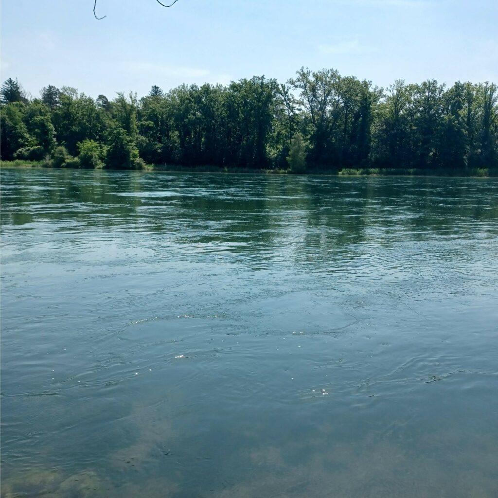 tiefblauer Rhein - 12.06.2021