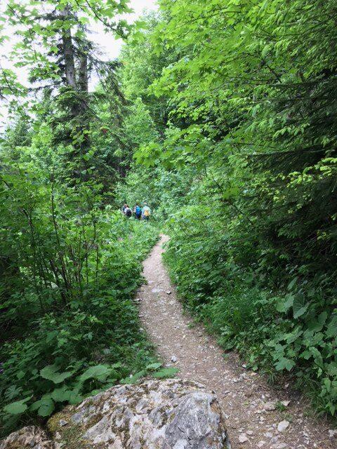 Abstieg auf grünumwachsenem Wanderpfad zum Fürrgli, 20.06.201
