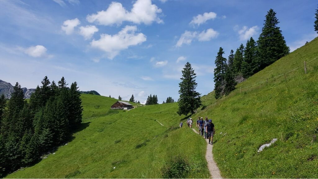 Alp Furgglen Richtung Amden, Arvenbüel -  27.06.2021