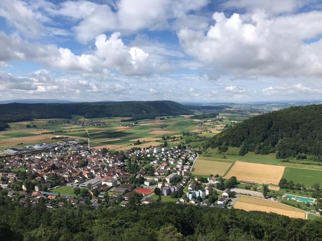 Sicht vom Randenturm auf Beringen - 11.07.2021