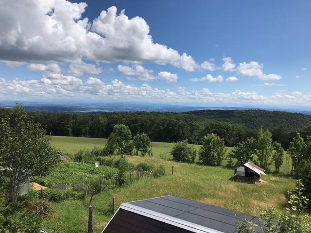 Blick vom Siblinger Randenhaus - 11.07.2021