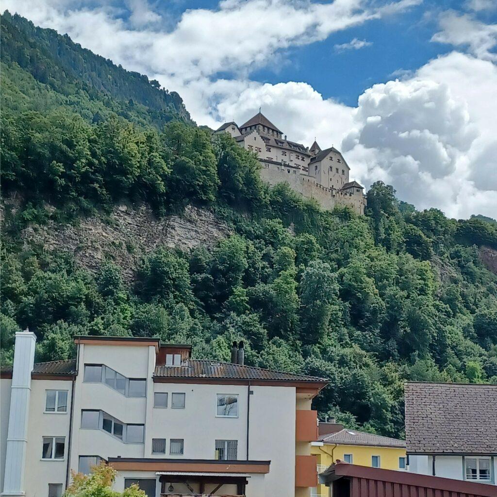 am Stadtrand mit Blick zum Schloss - 09.07.2021