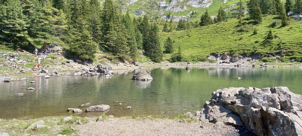 Der eher kalte Elsigsee lädt nur vereinzelt zum erfrischenden Bad ein. - 11.08.2021