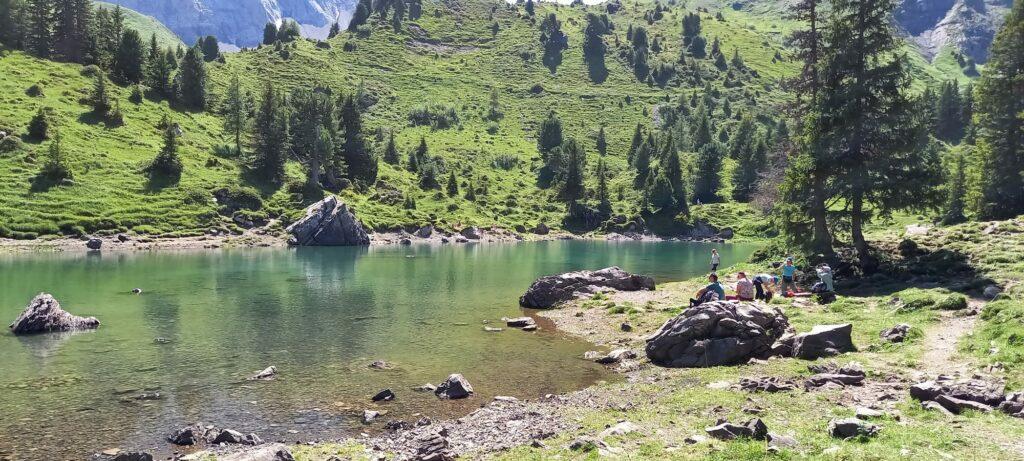 idyllischer Elsigsee inmitten schattenspendendem Tannengrün - 11.08.2021
