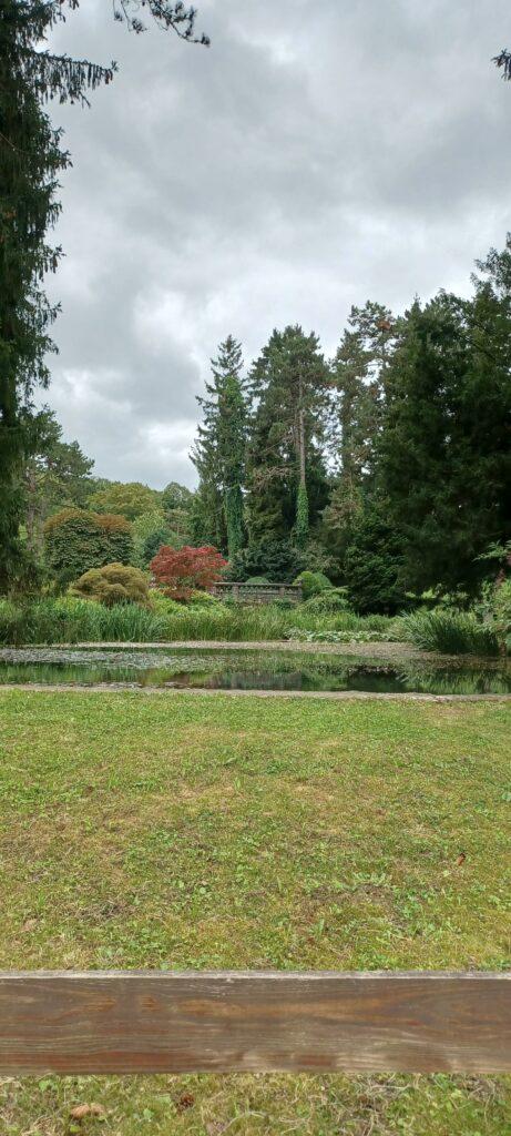 Farbiges Naturschauspiel im Wenkenpark - 25.09.2021