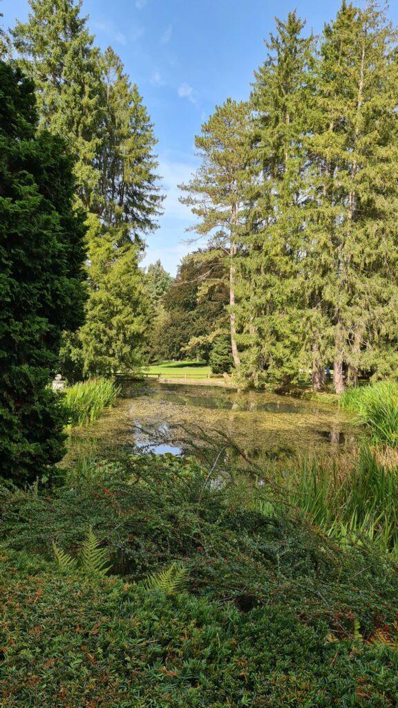 Herbstbeginn im Wenkenpark - 25.09.2021